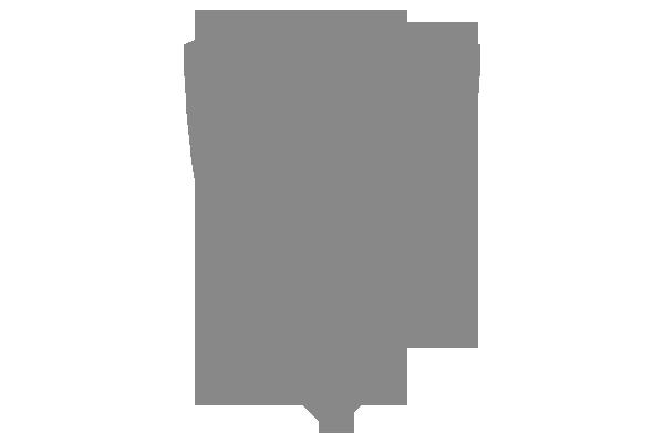 Logo výrobce Elite Force - airosftové pistole, kuličky